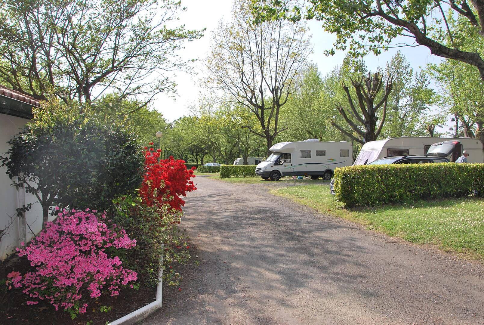 camping cambo pays basque